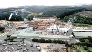 Pan-Pac-Pulp-Mill-EMS